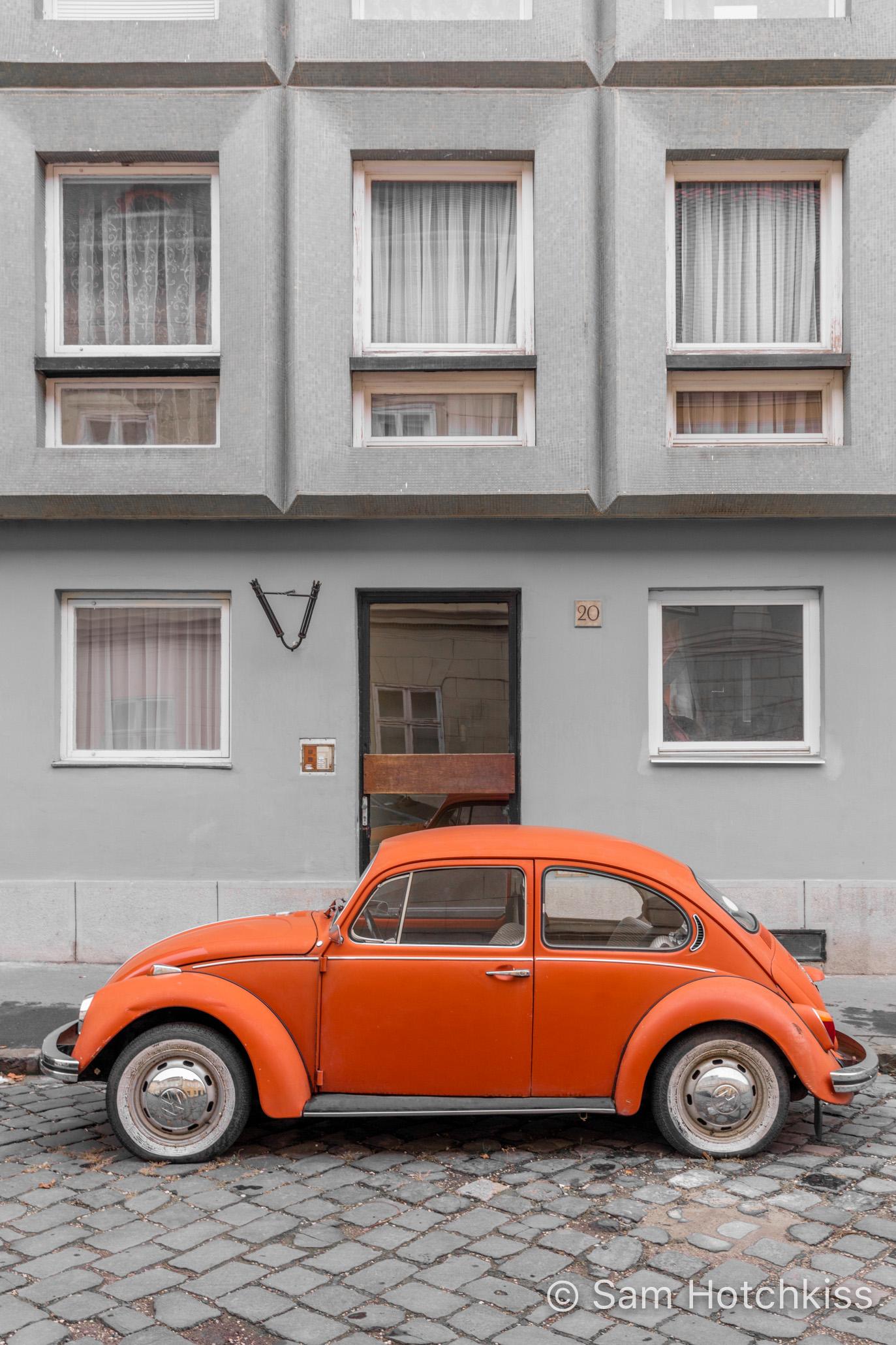 Budapest Beetle